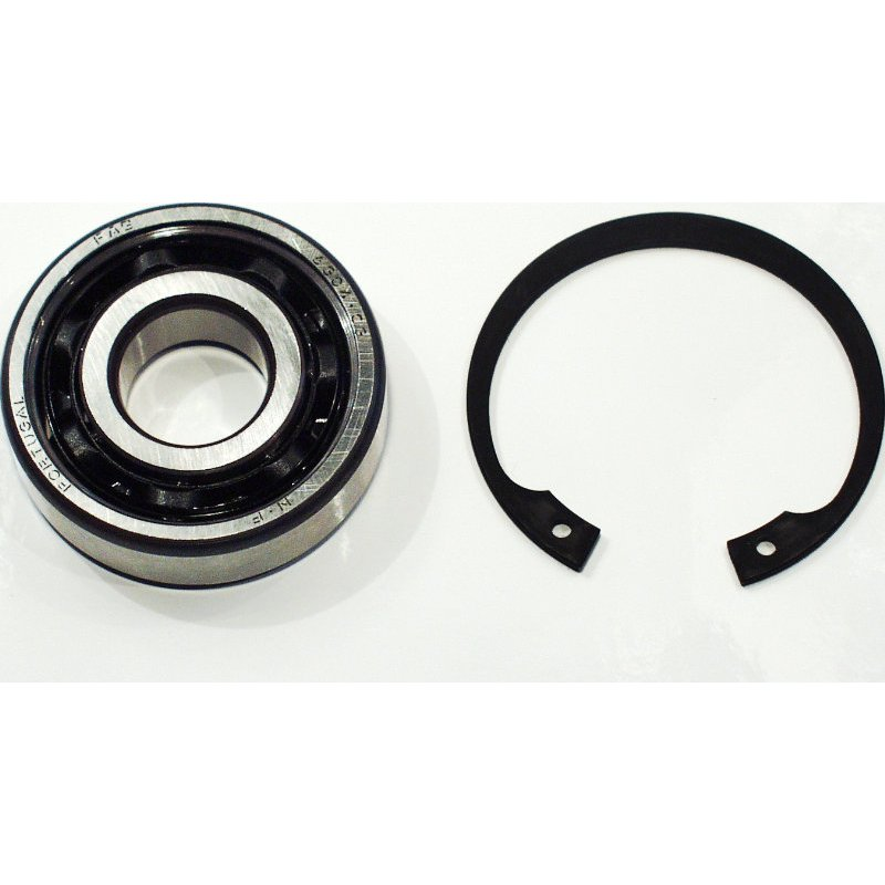 Mainbearing / bearing pulley end for all G-Superchargers (FAG 6304-TVH-C3)